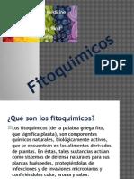 Fitoquimicos - Copia