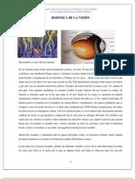 BIOFISICA DE LA VISIÓN.docx