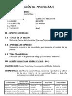 SESIÓN DE APRENDIZAJE - primaria-CULTIVO DE PLANTAS