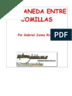 Rivera, Gabriel J - Castaneda Entre Comillas