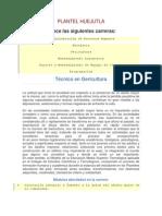CARRERAS DEL CECYTEH.docx