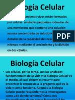 1. INTRODUCCION DE BIOLOGIA CELULAR ENERO 2013.ppt