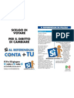 volantino referendum 2009