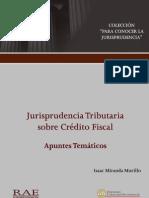 igv 300 hojas .pdf