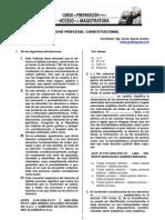 6-6-13 Gag-procesal Constitucional y Derechos Humanos (1)