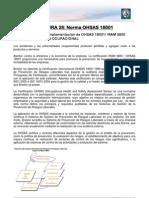Lectura 28 - Norma OHSAS 18001