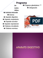Aparato Digestivo (1)