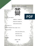 Monografia Reduccion Del Capital[1]