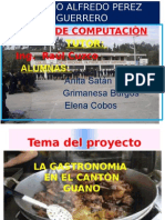 Proyecto Anita
