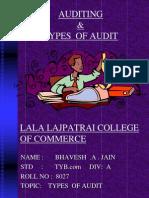 types of audit .ppt
