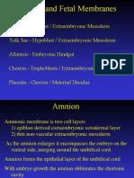 08 Placenta and Fetal Membranes Total