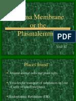 Cell Membrane, Biology