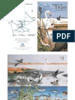 Biodiversidade do Estuário do Tejo
