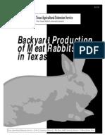 Backyard Prodcution of Rabbits in Texas