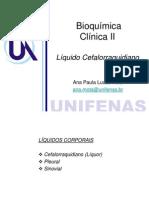 Aula+1+Liquor+2011-1