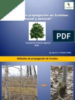 CLASE MÉTODOS DE PROPAGACIÓN Y VIVERO