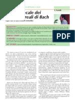 Utilizzo Fiori Di Bach