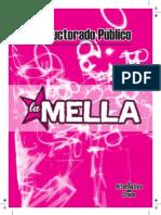 Plataforma 2013 Traductorado