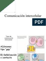 4-comunicacionintercelualr-090730143317-phpapp02