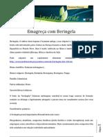 Emagrece com Beringela.pdf