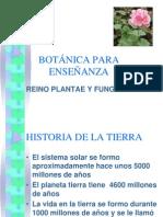 Origen y Morfologia Plantas