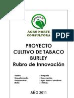 Proyecto Cultivo de Tabaco Burley