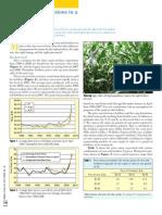 2008. Corn Fertilizer Decisions in a High-Priced Market (North America)