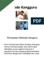 Metode Kangguru