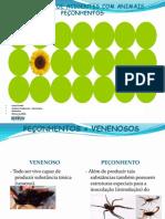 PREVENÇÃO DE ACIDENTES COM ANIMAIS PEÇONHENTOS.Março2012