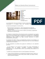 Master Derecho Penal Internacional