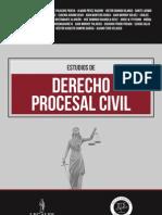 Indice Estudios Derecho Procesal Penal
