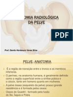 Anatomia Radiologica Da Pelve