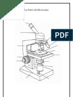 Las Partes Del Microscopio