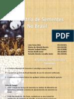 TB 11 - Industria de Sementes No Brasil