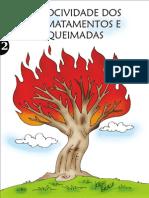 cartilhampgoqueimadas-101009132951-phpapp02