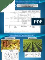 Biodiversidad_agroecosistema