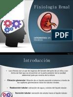 Fisiología Renal.