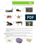 43 02 12 Invertebrados I[1]