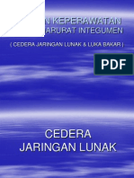Askep Integumen (Jarlu+Bakar)