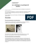 Protocolo Proyecciones Rx de Hombro