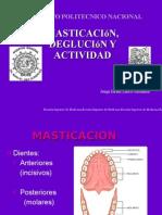 Alteraciones de La Masticacion Deglucion y Actividad Enzimatica
