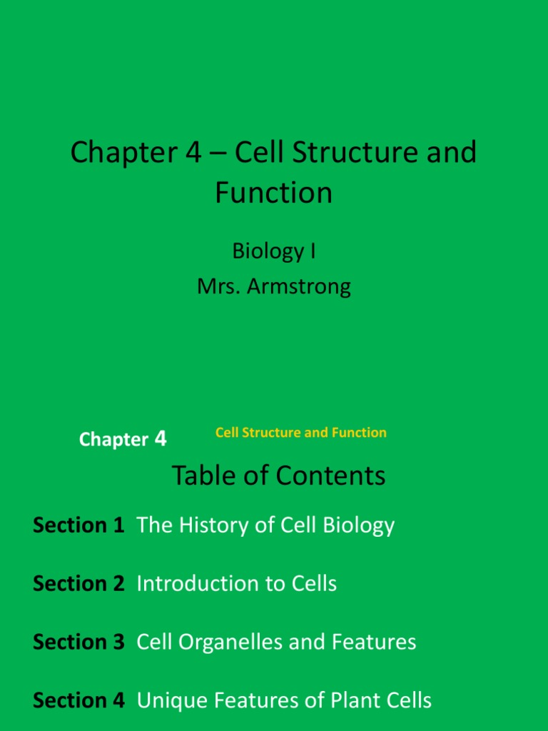 Chapter 4 Cell Structure And Function Ehsweb Endoplasmic Reticulum Anatomy Functions Plant Diagram Organelles Biology
