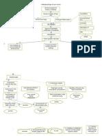 Pathophysiology of Liver Cancer 2.doc