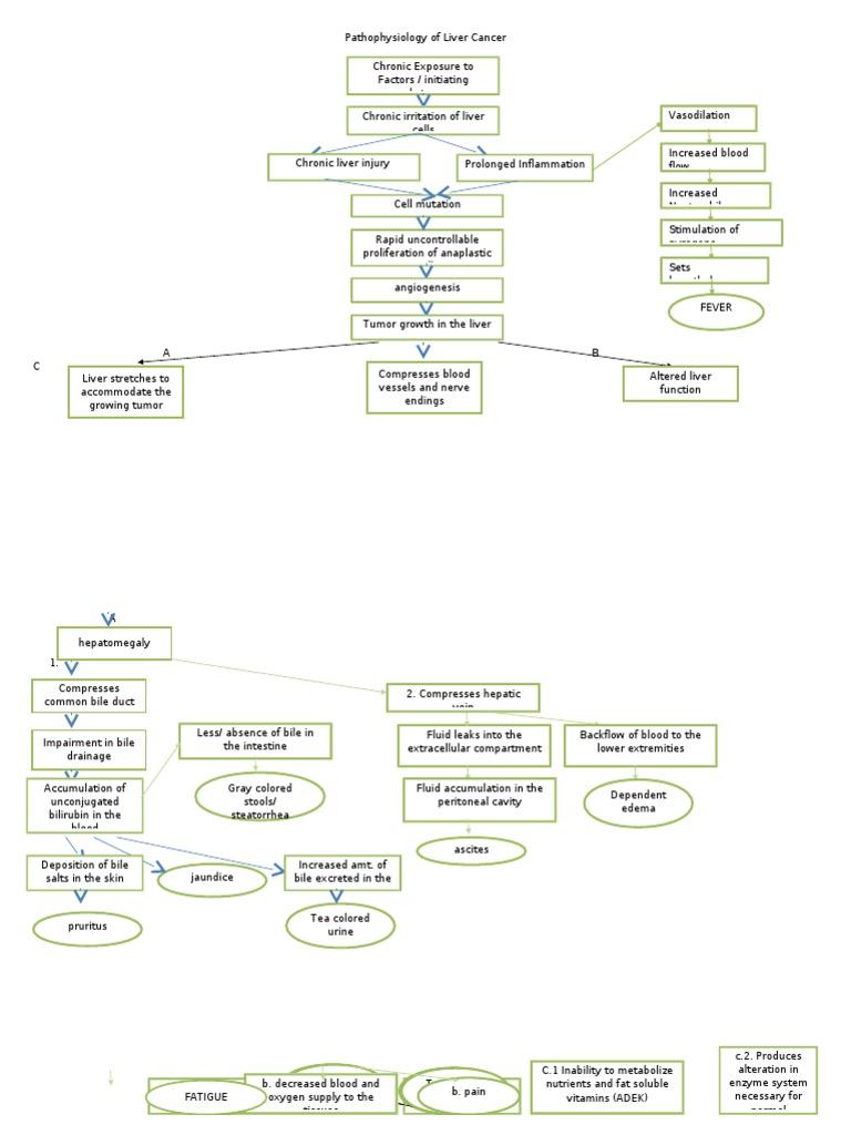 Pathophysiology of liver cancer 2c ccuart Images