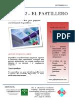 BOLETÍN 02 - EL PASTILLERO