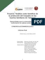 SP07 Informe Proyecto Analisis Costo Beneficio de Economia Huertos Tabasco