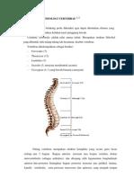 Anatomi Dan Fisiologi Vertebrae 1