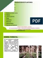 Manual Del Viverista