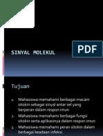 2013 Sitokin.ppt