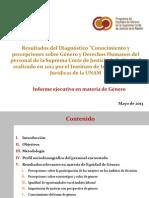 Presentacion Diagnostico Genero 2013